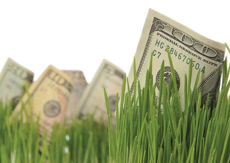 Cash Accumulation & Growth - Brad Smith